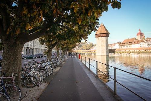 HD 바탕화면, 경치, 도시, 무료 바탕화면의 무료 스톡 사진