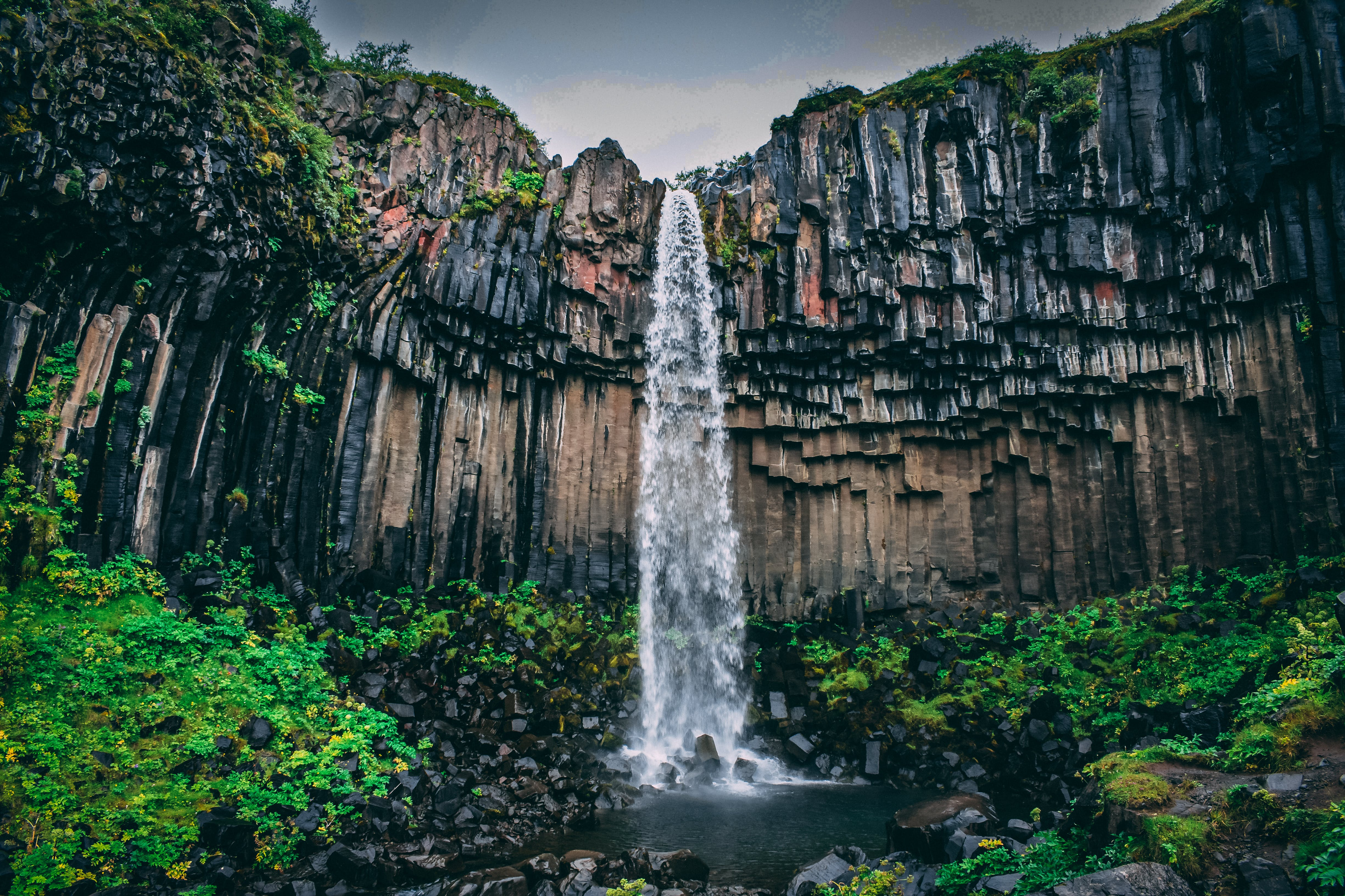 Waterfall Surrounded With Green Leaf Plant View