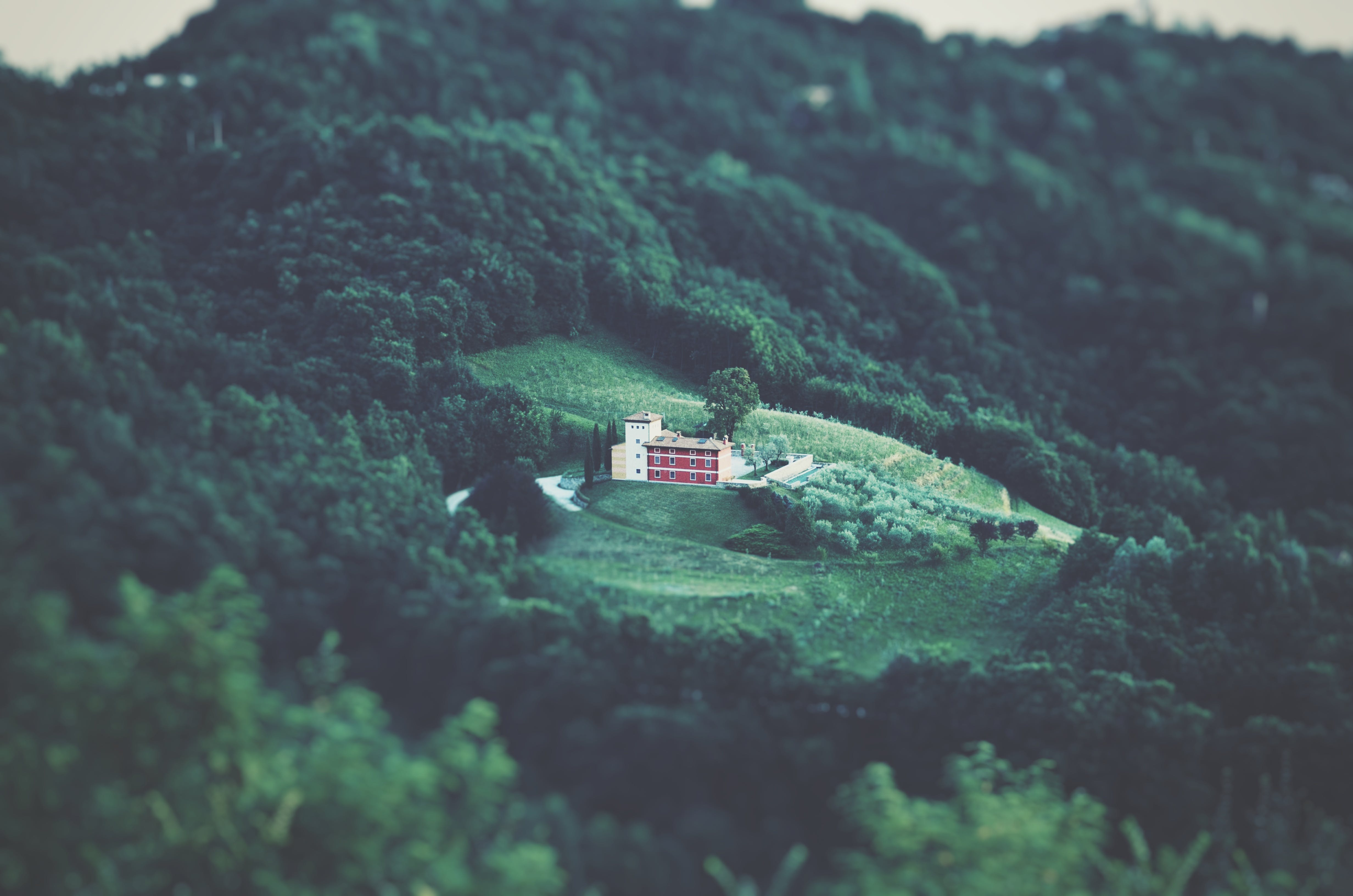 Areal Photography of White Building Surrounded by Forest