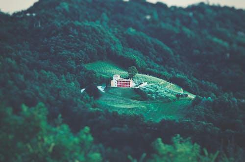 ağaçlar, bina, dağ, gündüz içeren Ücretsiz stok fotoğraf