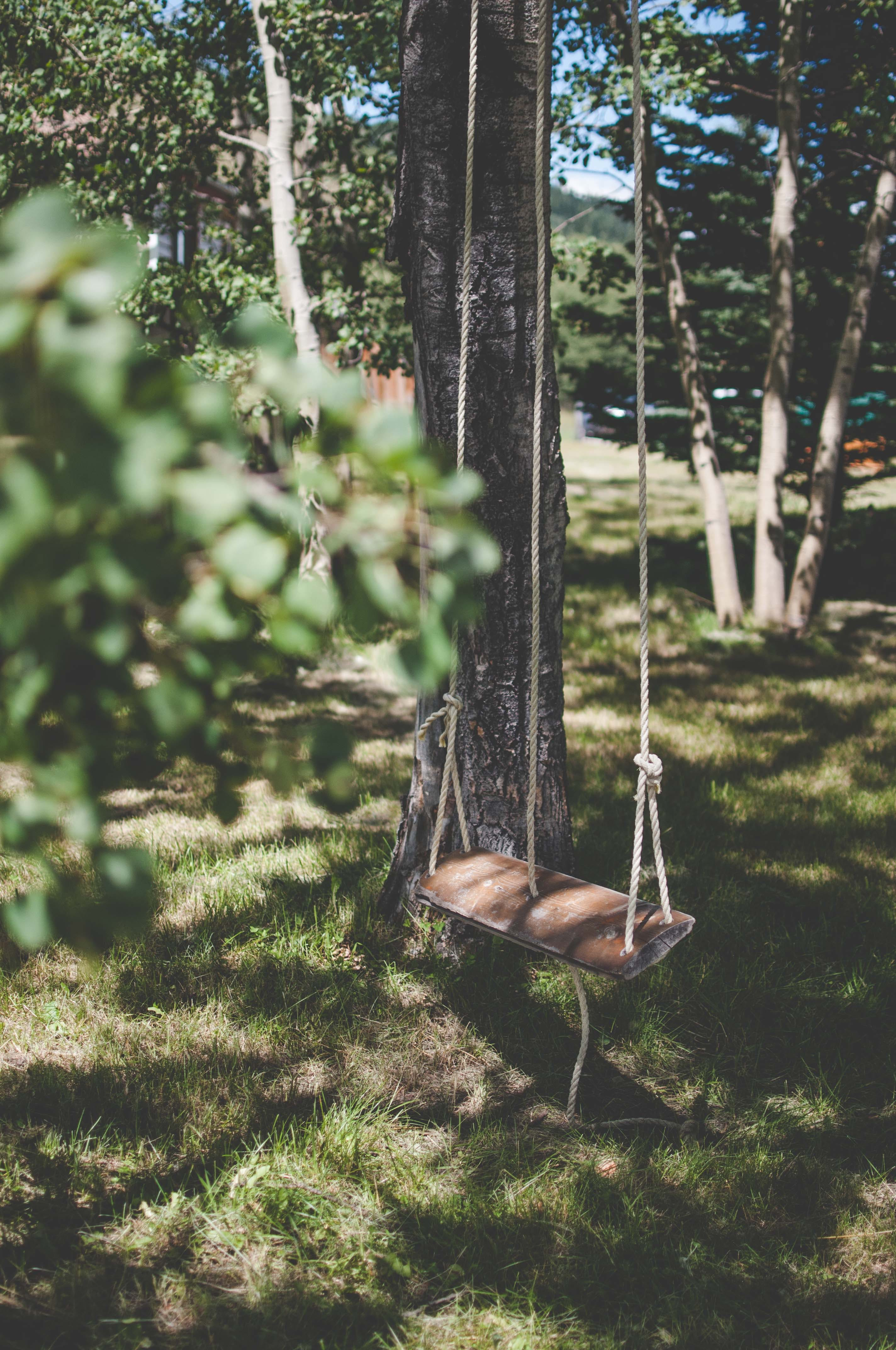 Free stock photo of leaves, playground, shadows, summer