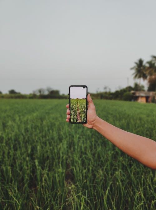 Immagine gratuita di cellulare, dispositivo, esterno