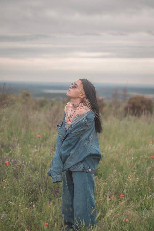 Photos gratuites de automne, beau, clairière