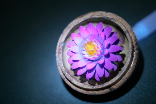 Free stock photo of candle, thailand, hand carved