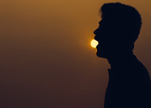 Безкоштовне стокове фото на тему «вечір, вечірнє сонце, вид збоку, з підсвіткою»