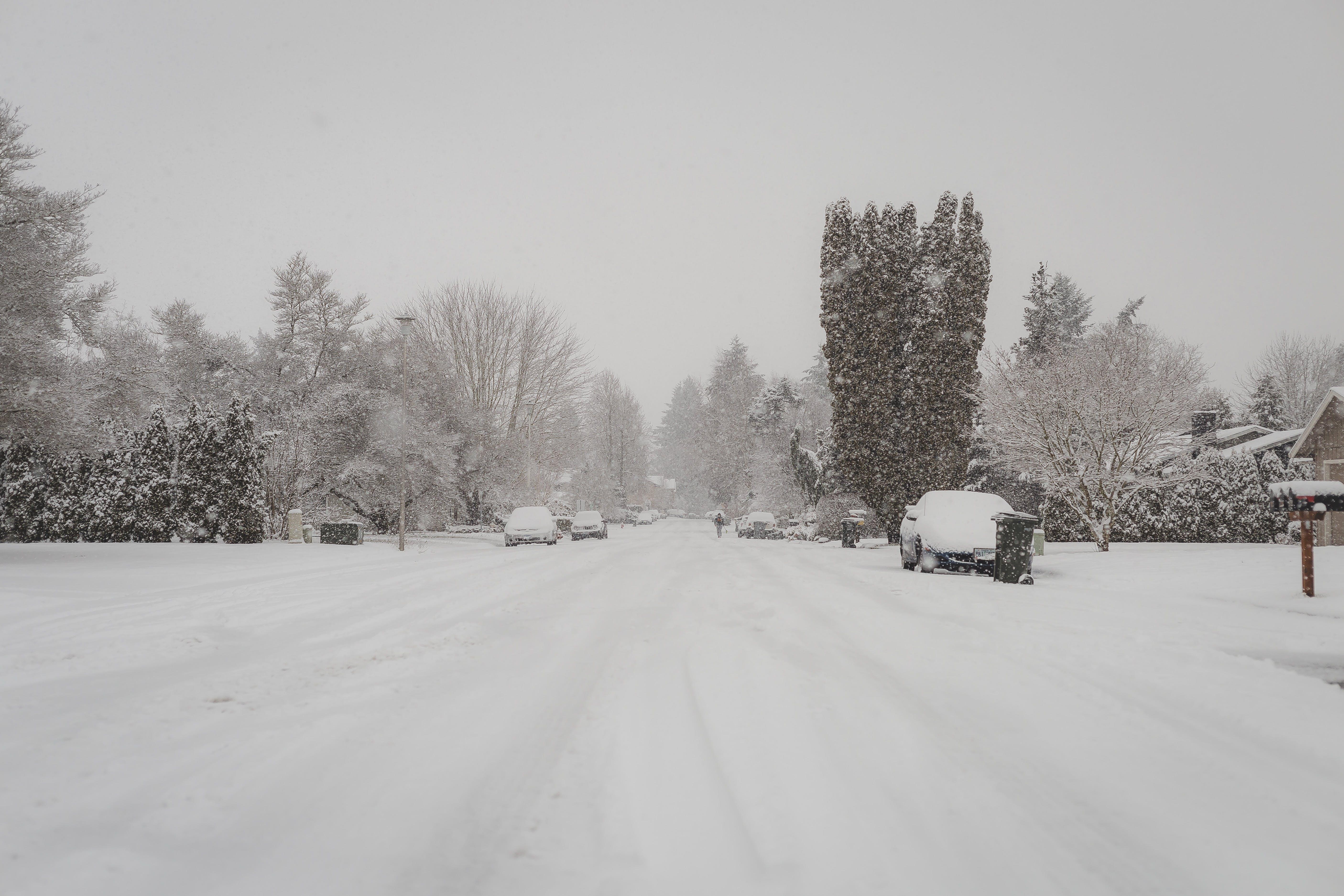 Free stock photo of snow, cars, street, winter