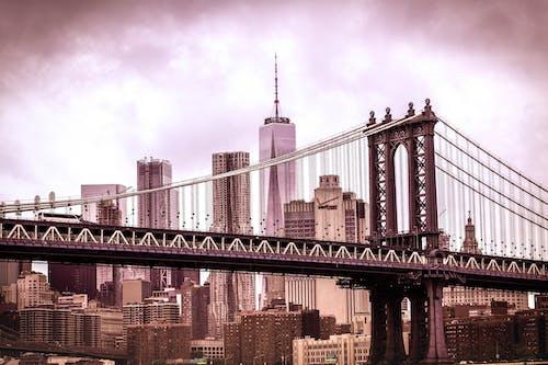Ảnh lưu trữ miễn phí về các tòa nhà, cảnh quan thành phố, cầu, cầu mây