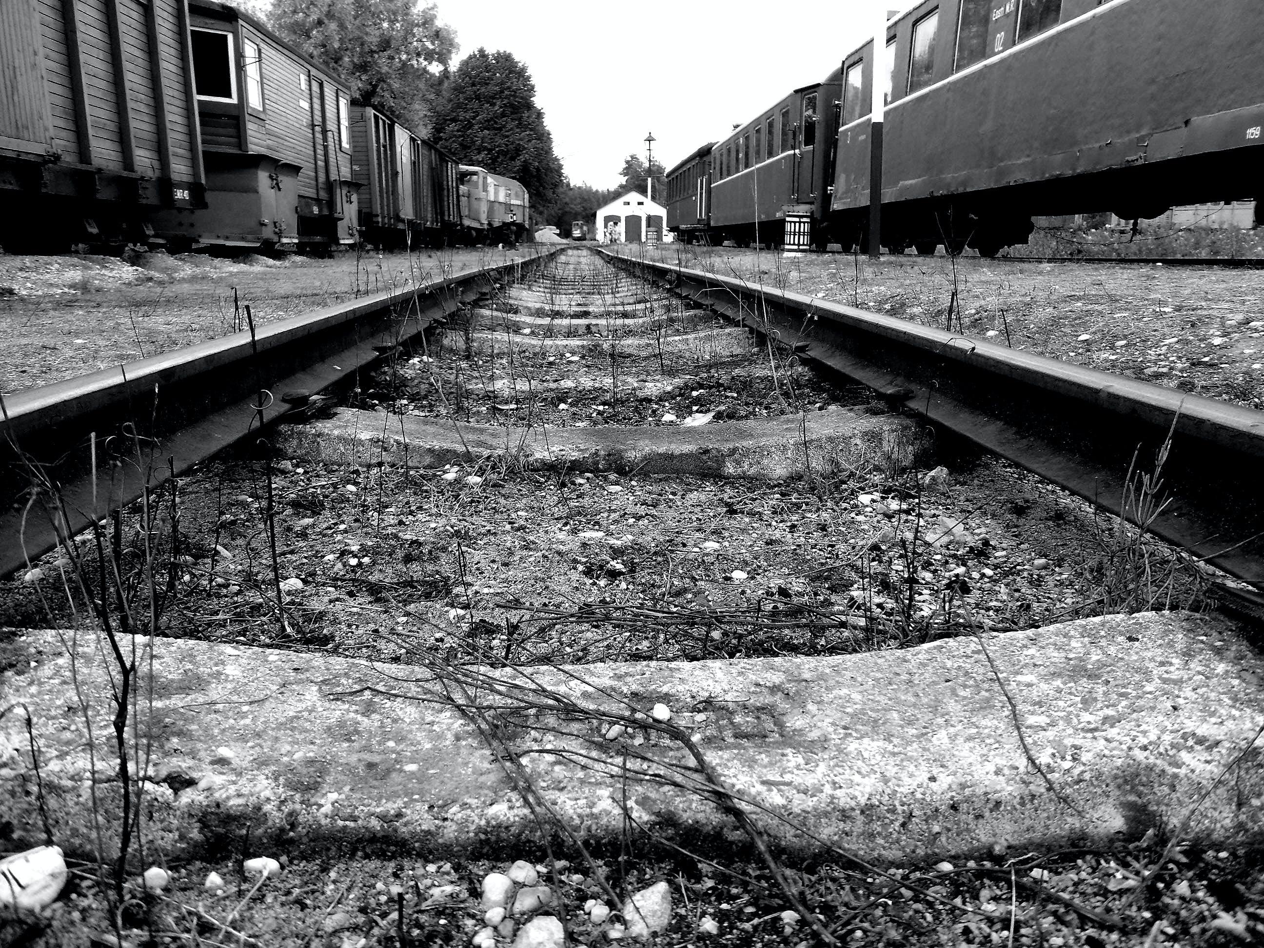 Free stock photo of black and white, railway