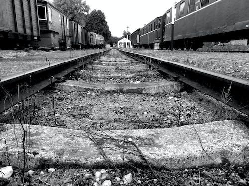 Kostenloses Stock Foto zu eisenbahn, schwarz und weiß