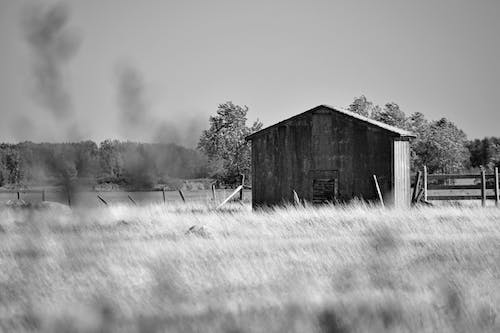 Free stock photo of b amp w, black and white, field building