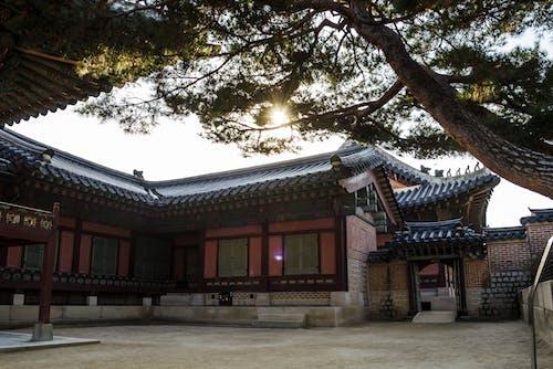 Free stock photo of asia, asia style, korea