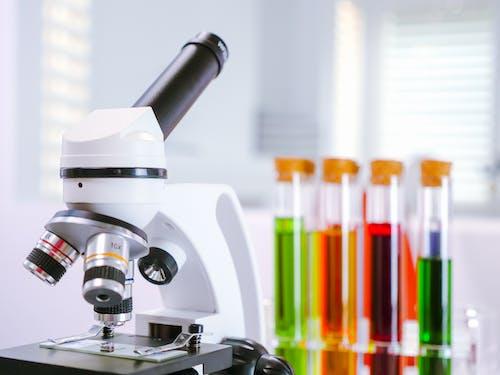 Kostenloses Stock Foto zu biologie, biotechnologie, bühnenclips
