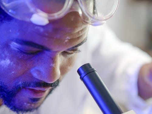 Foto profissional grátis de analisando, análise, biologia