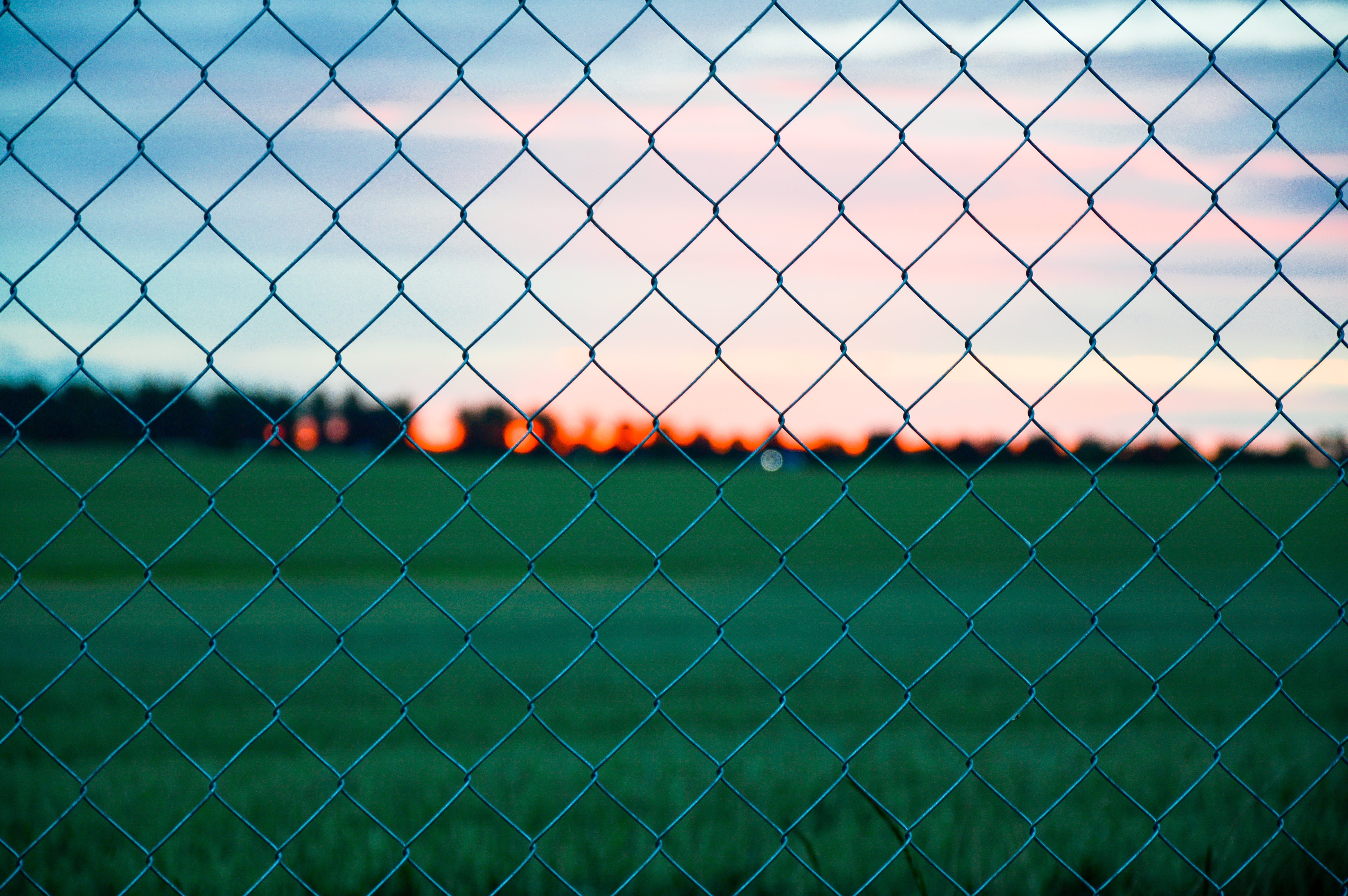 Gray Metal Wire Fence Near Green Grass during Golden Hour Photography