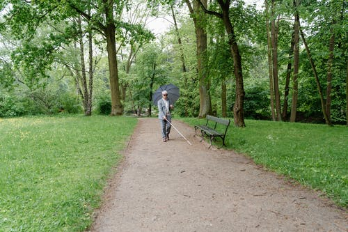 Person in Blue Jacket and Blue Denim Jeans Walking on Pathway Between Trees