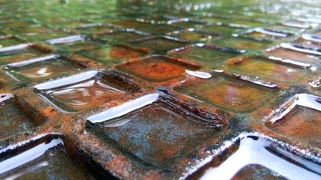 Free stock photo of rain, rust, wet