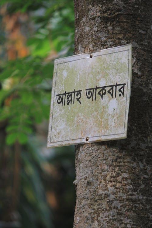 Photos gratuites de allah, au bangladesh, bangladesh pour l'islam
