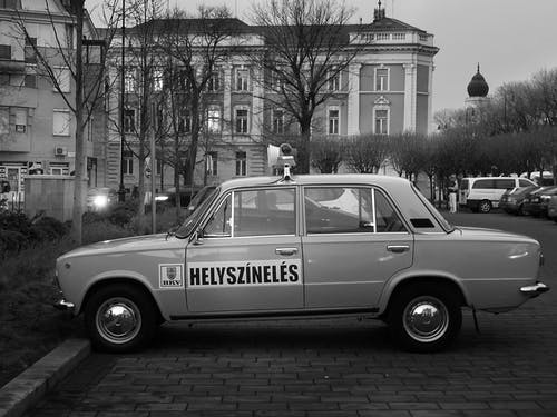 Fotos de stock gratuitas de arboles, auto, automóvil, berlina