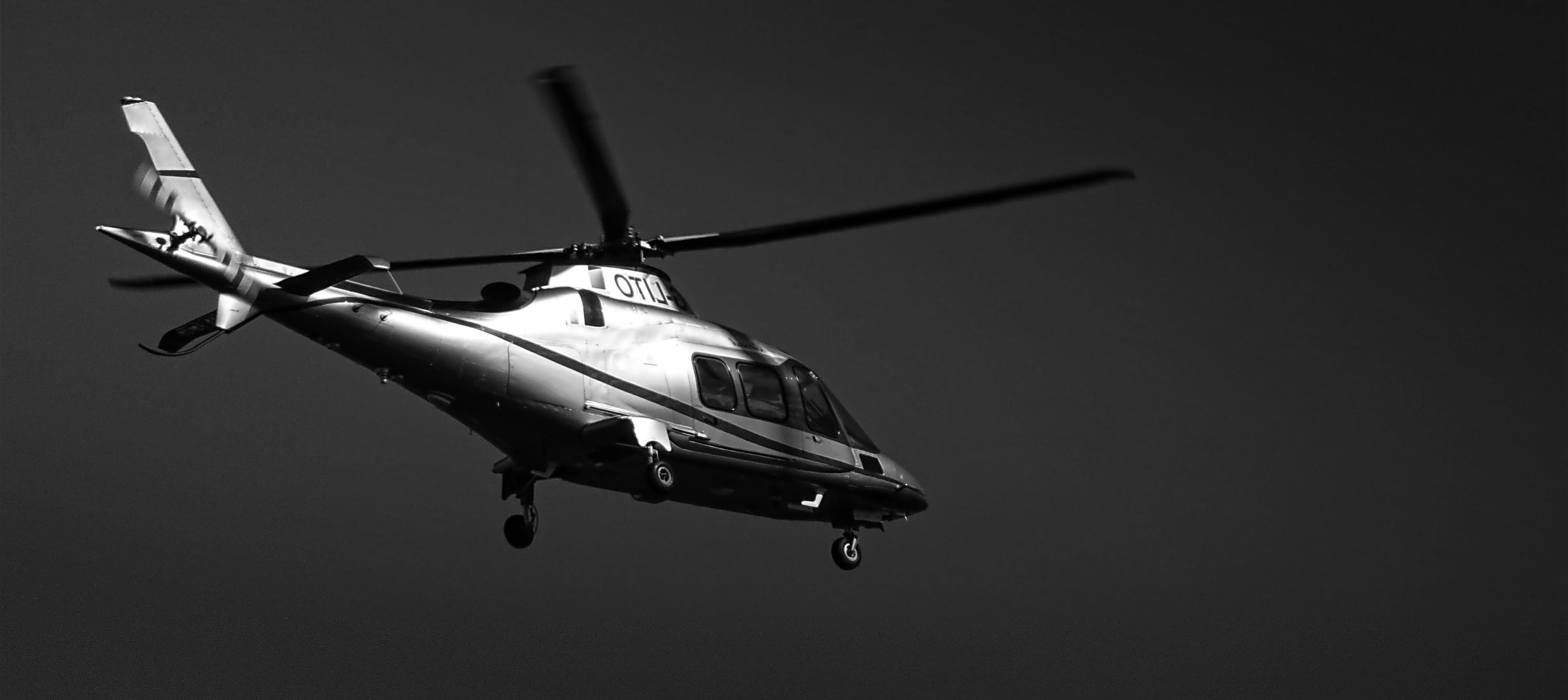 Základová fotografie zdarma na téma černobílý, dopravní systém, jednobarevný, let