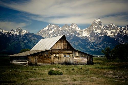 キャビン, グランドテトン国立公園, テトン山脈, 森の中の無料の写真素材