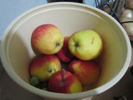 Free stock photo of apple, fruits