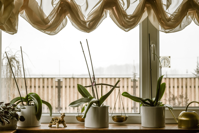 Free stock photo of cozy, home, home decor, home interior