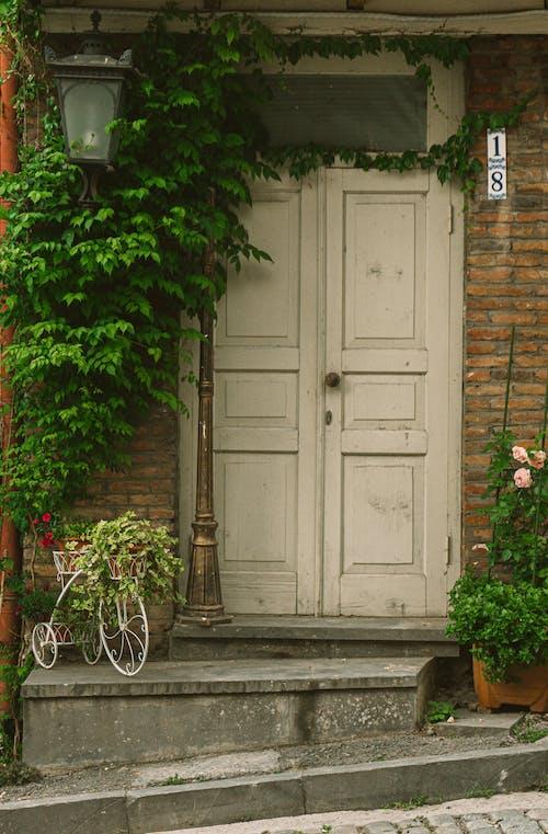 Fotobanka sbezplatnými fotkami na tému architekt, architektúra, brečtan