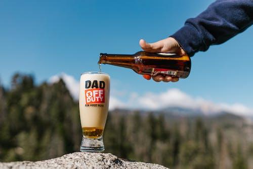 Free stock photo of beer, beer bottle, beer glass