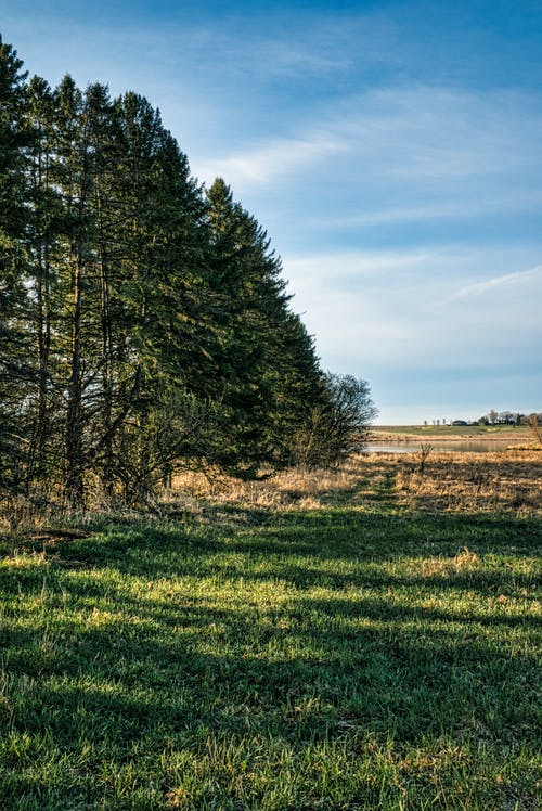 Fotobanka sbezplatnými fotkami na tému dedinský, exteriéry, farma
