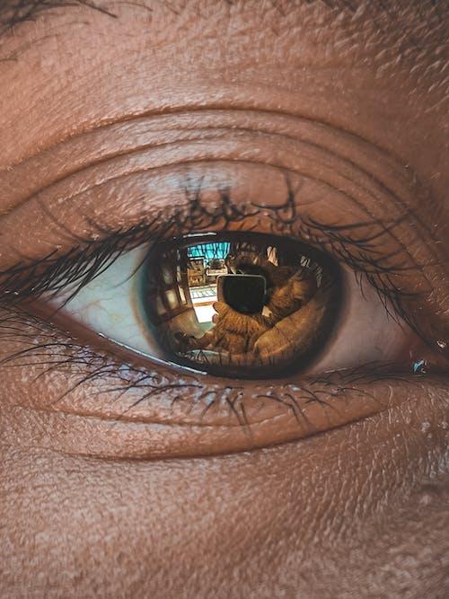 Gratis stockfoto met gezichtsveld, gezichtsvermogen, huid