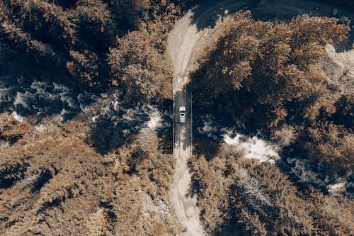 A Car Crossing a Bridge