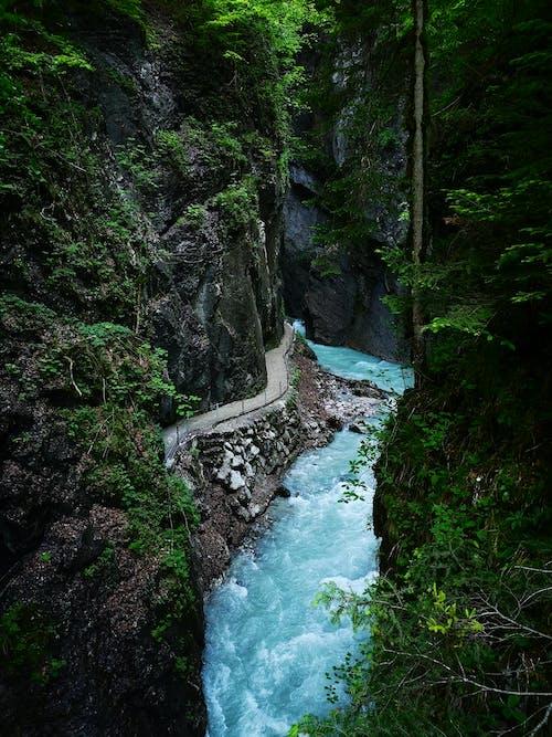 Kostenloses Stock Foto zu bäume, berge, blau
