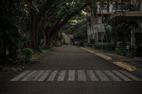 Základová fotografie zdarma na téma asfalt, auto, cestování