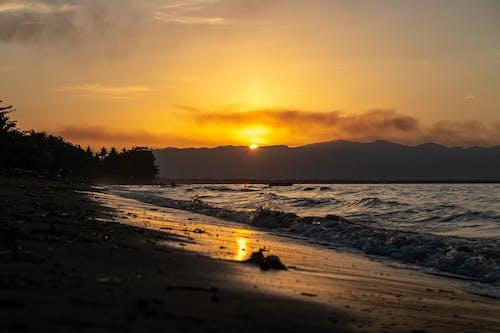 Základová fotografie zdarma na téma krajina, léto, moře