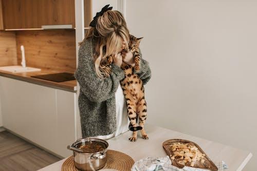 Бесплатное стоковое фото с беременная женщина, беременность, время готовки