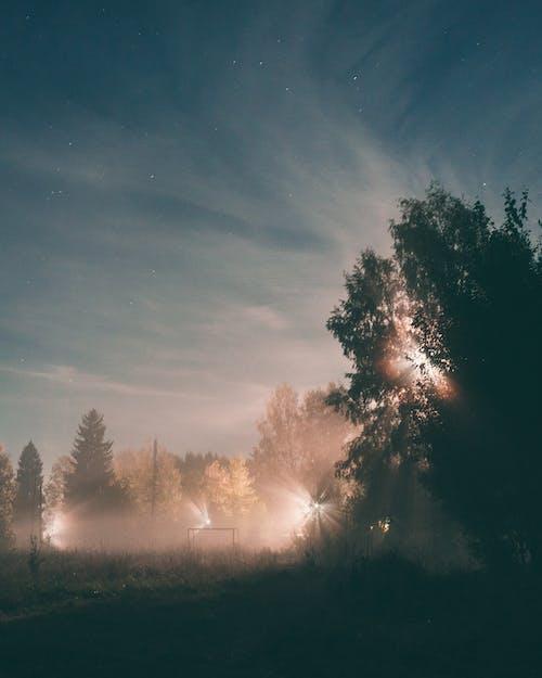 光, 光線, 剪影 的 免費圖庫相片