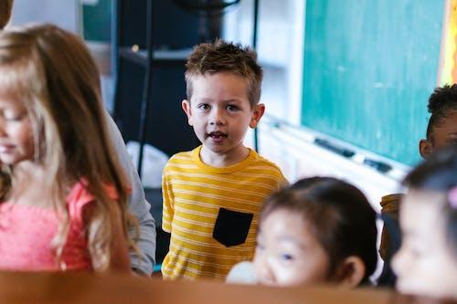 คลังภาพถ่ายฟรี ของ กลุ่ม, การศึกษา, การเรียนรู้
