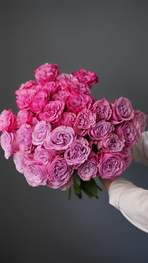 A Person Holding a Bouquet of Roses