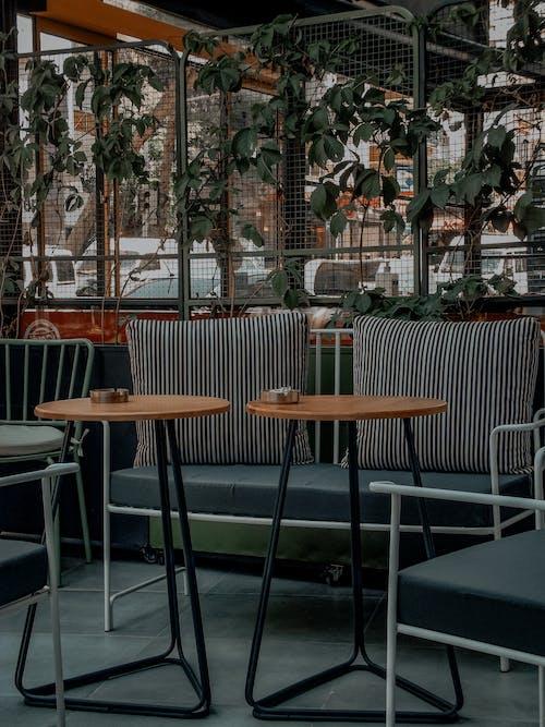 Fotobanka sbezplatnými fotkami na tému drevený, interiérový dizajn, jesť večeru