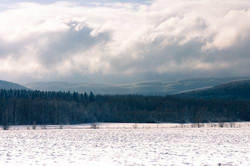 ahşap, bulutlar, carpathians, dağ içeren Ücretsiz stok fotoğraf