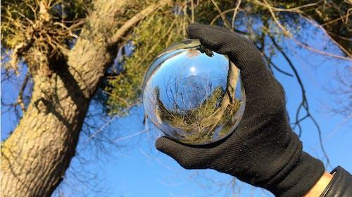 Безкоштовне стокове фото на тему «esfera, vegetación, мано»