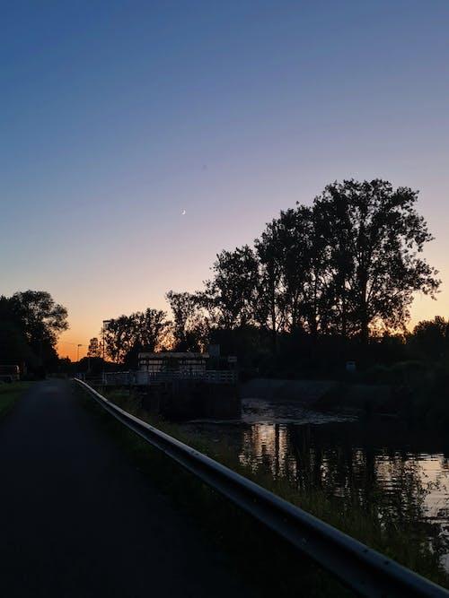 Free stock photo of canal, evening, evening sun
