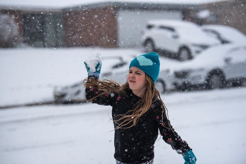 Free stock photo of snowball, texas