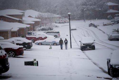 Free stock photo of couple walking, snow, winter