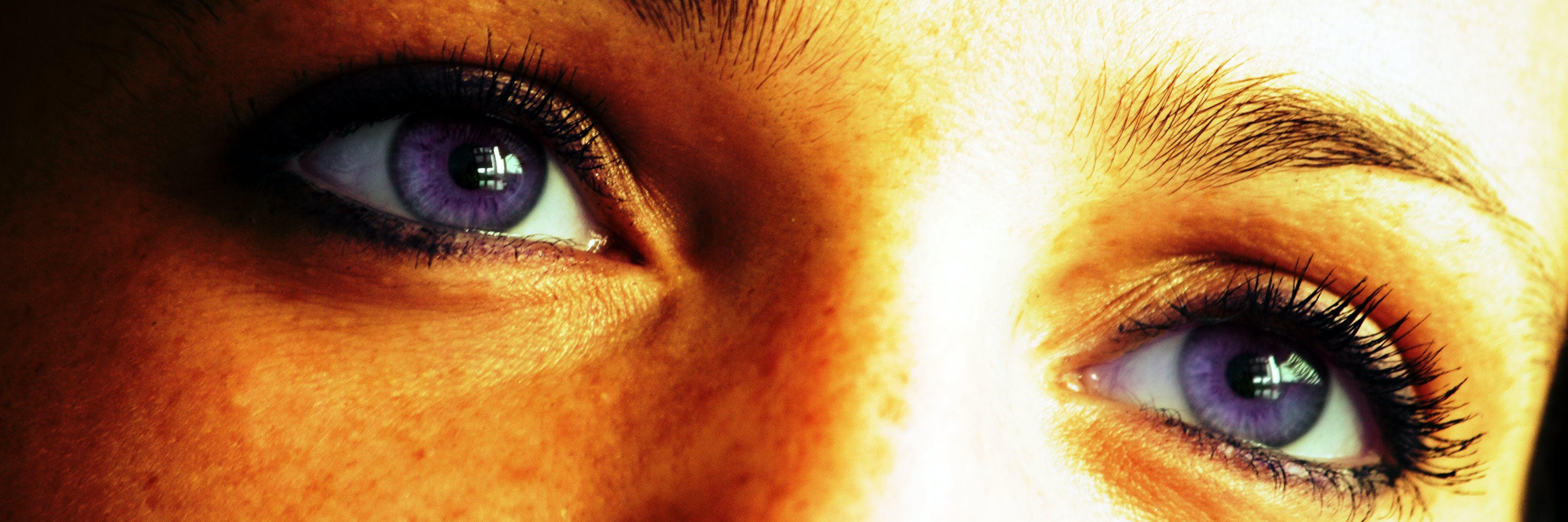 Základová fotografie zdarma na téma barevné oči, detailní pohled, detailní záběr, fialové oči
