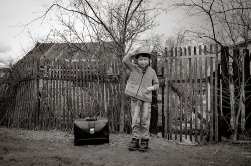 Immagine gratuita di abbandonato, adulto, albero