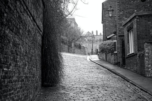Greyscale Photography of Roadway Between Brick Wall and Houses