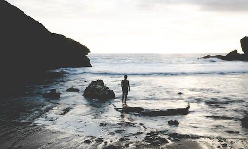 가판대, 경치, 사람, 우울한의 무료 스톡 사진