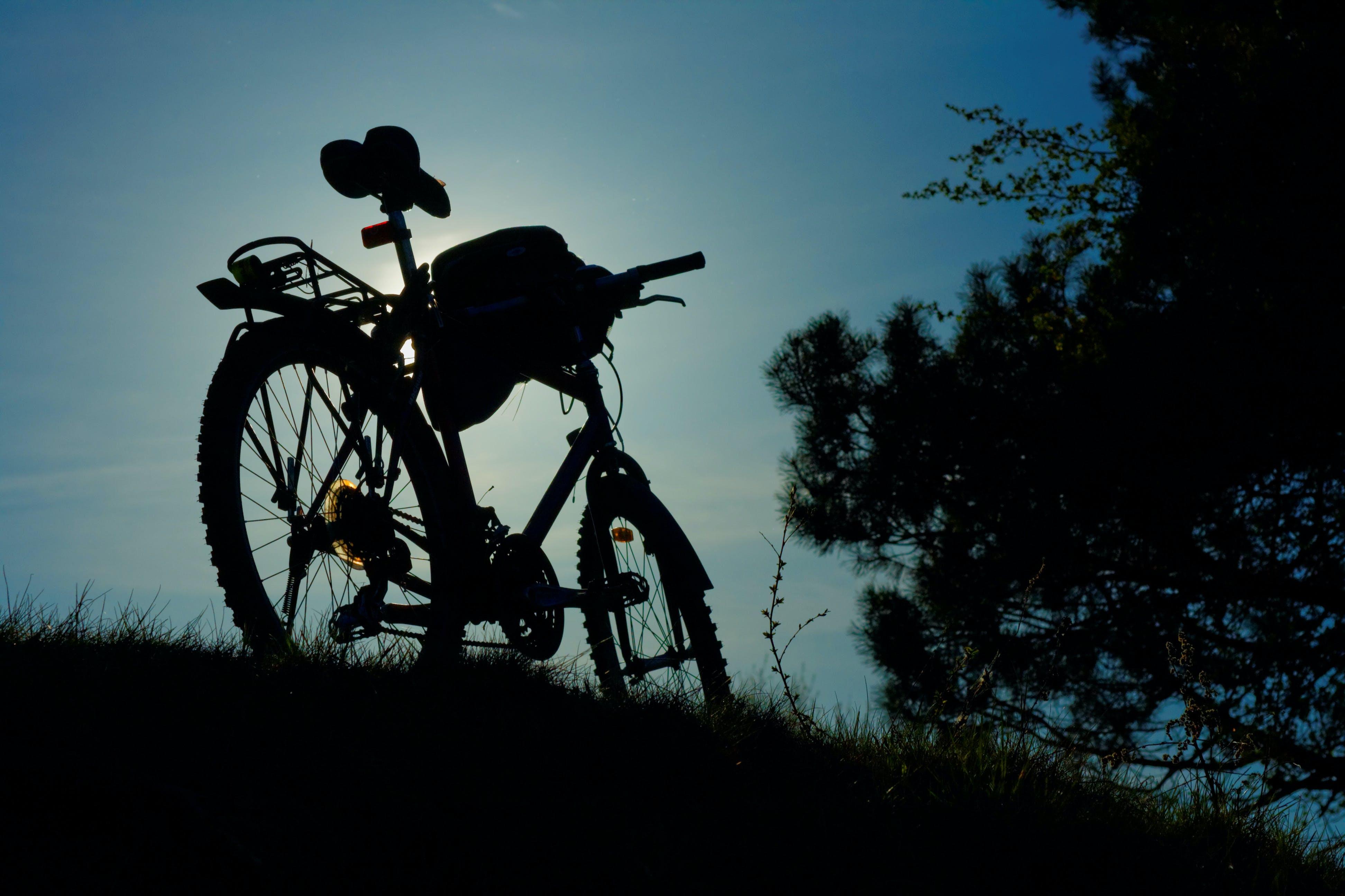 bike, trip