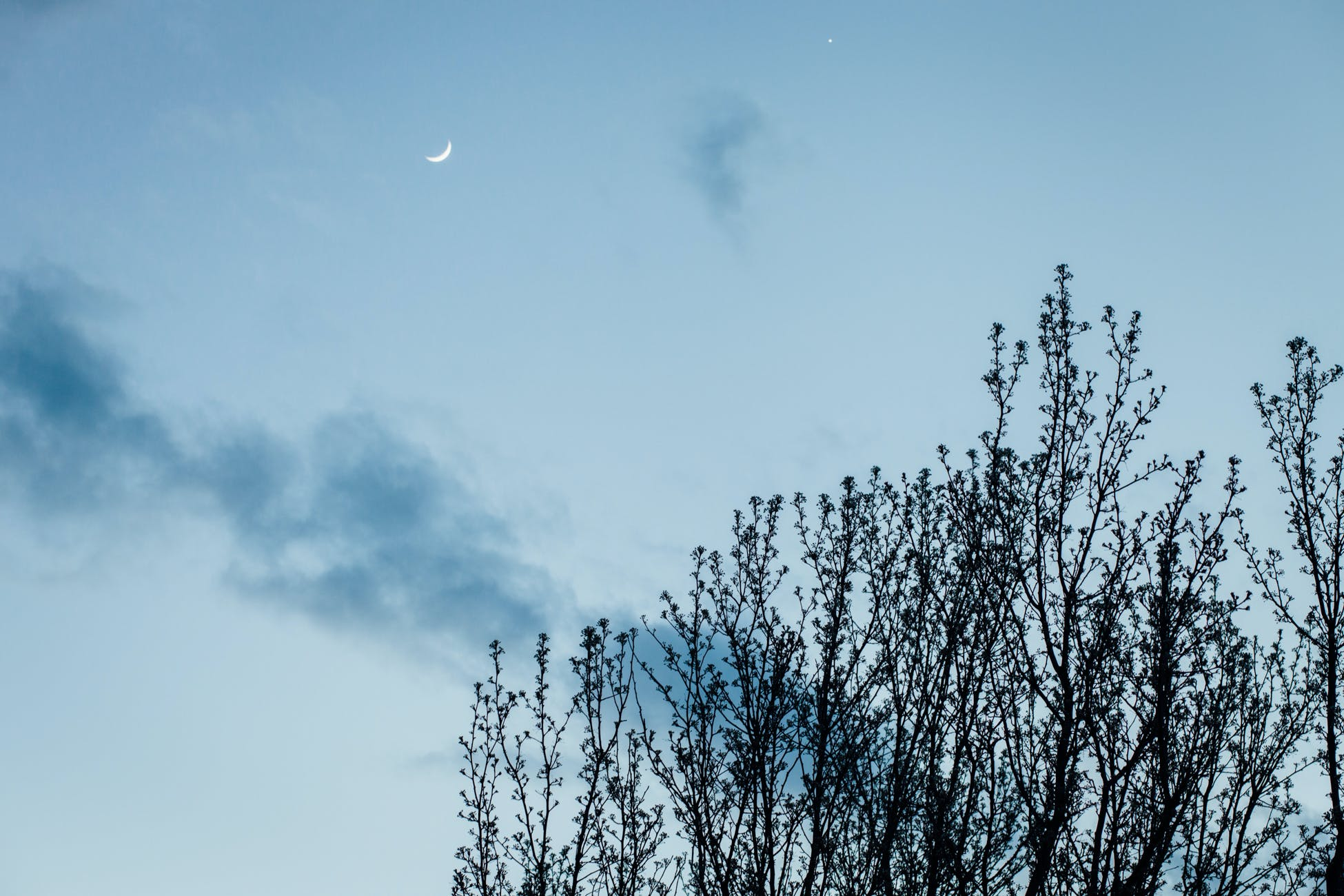 Free stock photo of moon, nature, outdoors, sky